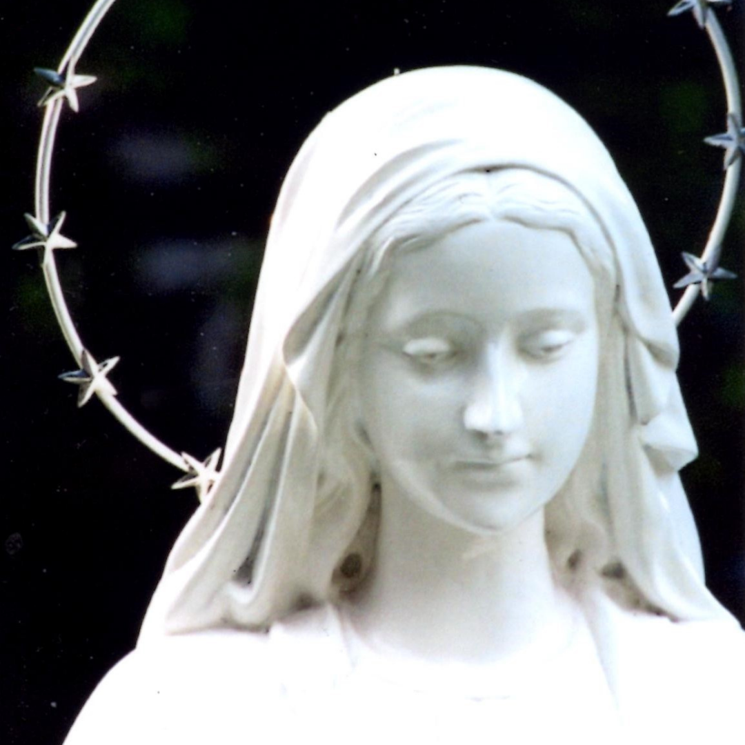 Immaculata, Patroness of our Country